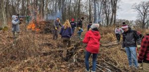 Picture of citizens clearing buckthorn