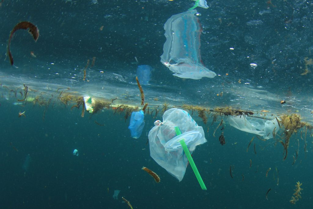 Picture of plastic trash floating in water